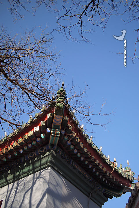 北京的红与蓝
