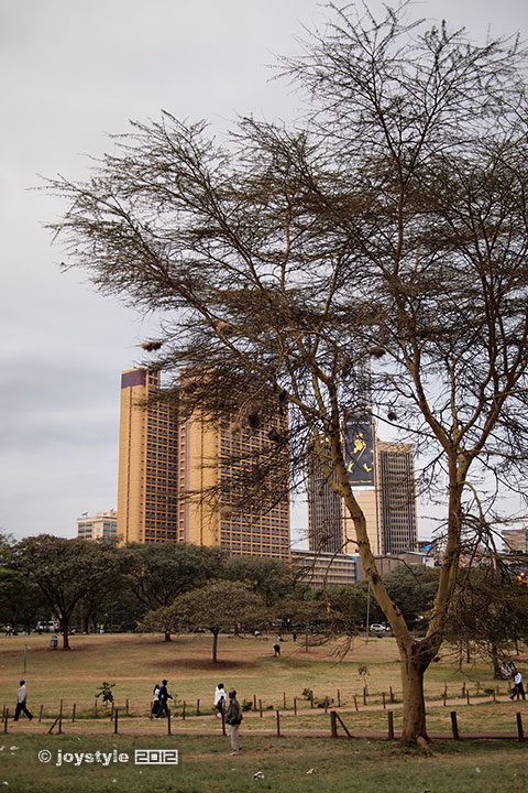 再走肯尼亚——内罗毕Uhuru Park
