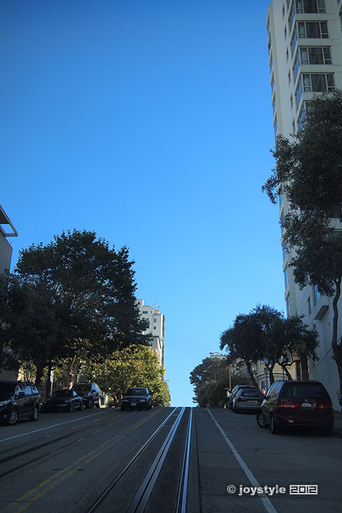 旧金山九曲花街