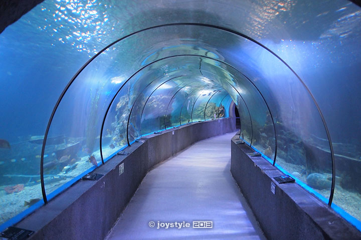 广西北海海底世界