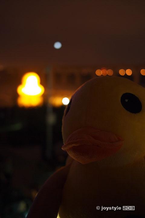 园博会大黄鸭
