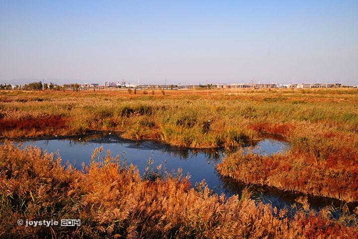 小白河湿地公园
