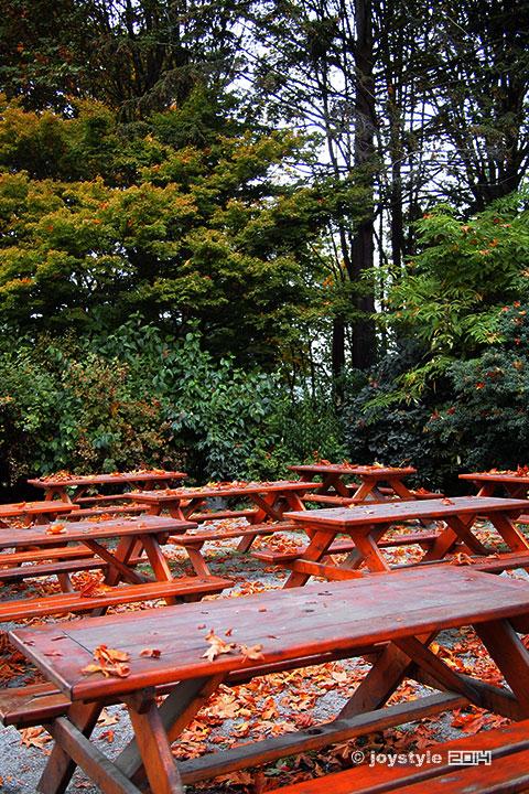 温哥华 斯坦利公园