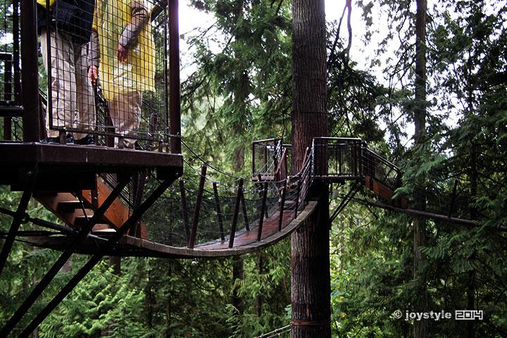 温哥华 卡皮兰诺吊桥公园