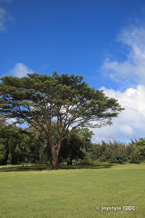 塞班岛 美国纪念公园
