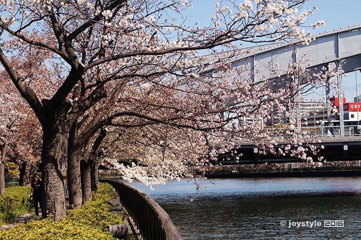 2016年4月2日摄于日本大阪造币局