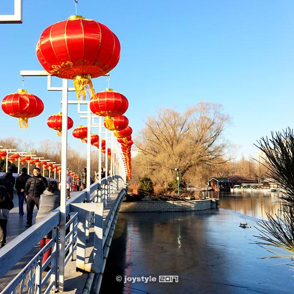 2017年2月1日摄于北京玉渊潭公园