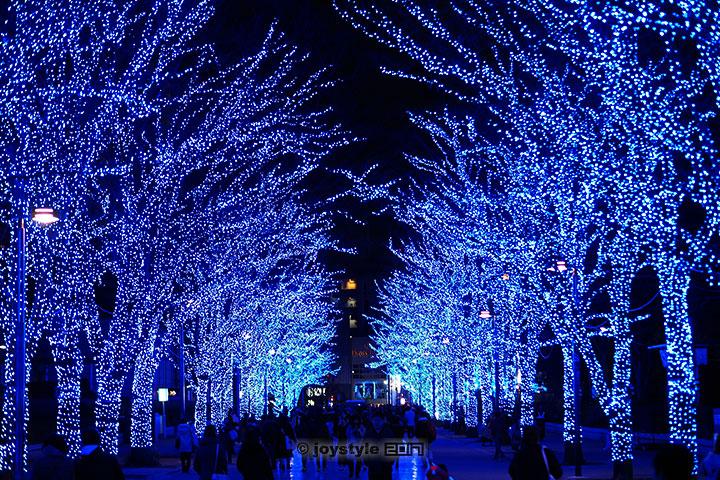 2017年1月1日摄于日本东京代代木公园