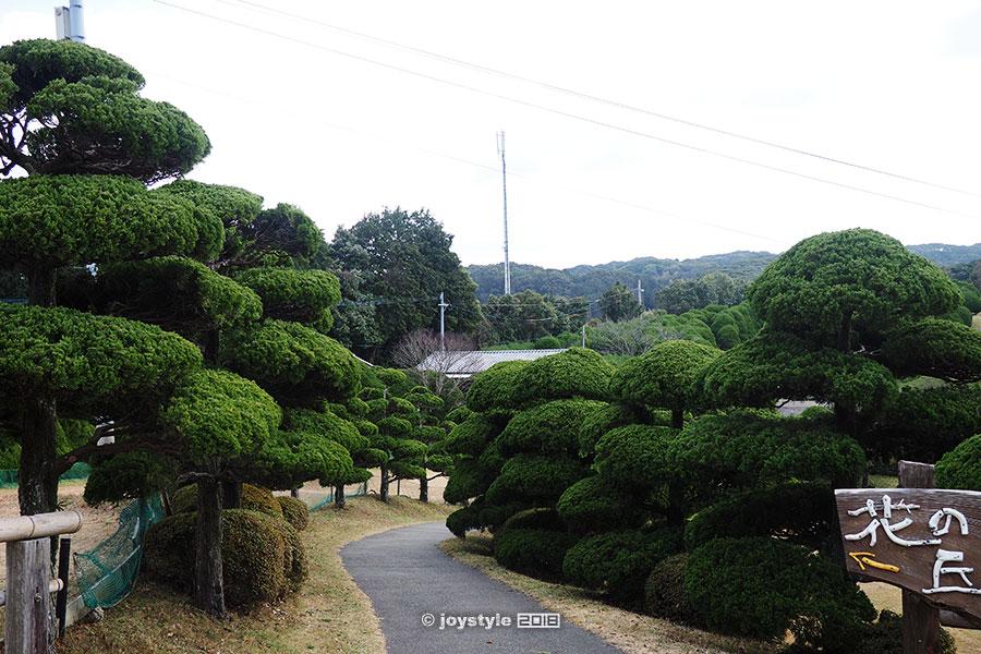 日本 福冈